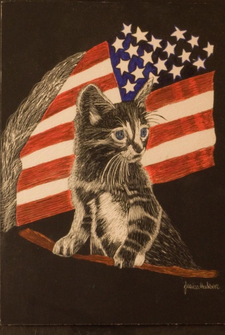 American Kitty