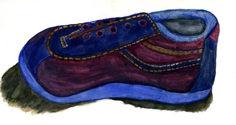 Shoe paint0